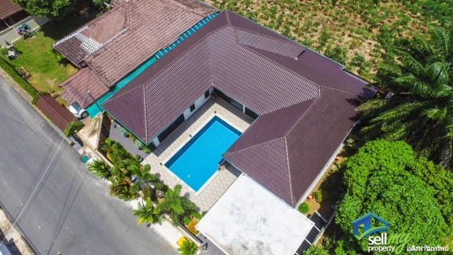 Brand New Pattaya Pool Villa - House -  -